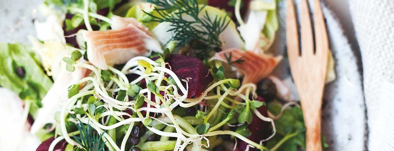 Salade van andijvie met gerookte forel & linzen
