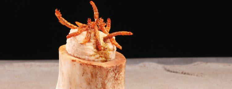 Hummus van meelwormen - Gezond aan tafel - recept