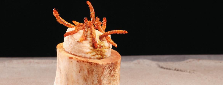 Hummus van meelwormen