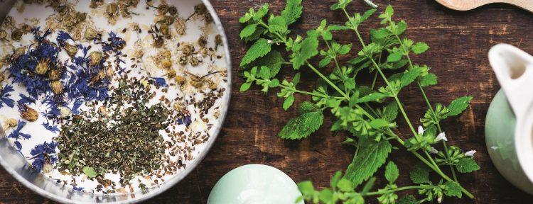 Slaapdrankje met kamille, citroenmelisse en korenbloem - Gezond aan tafel - recept